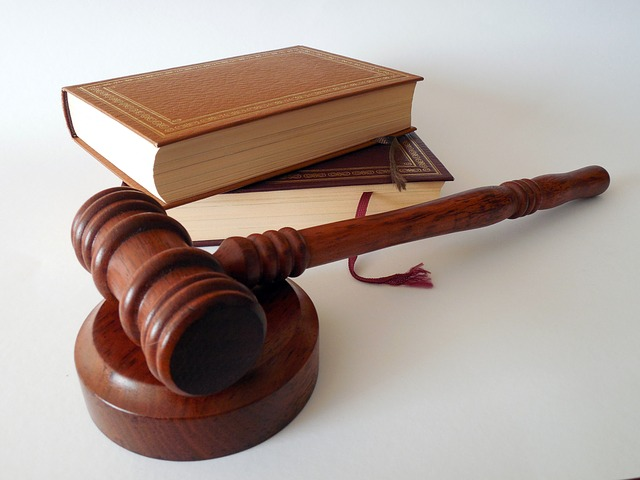 adwokaci a prawo